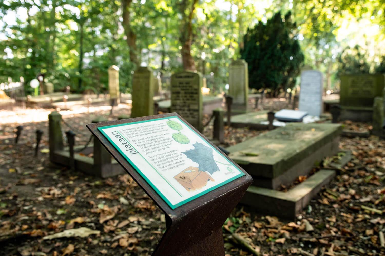 begraafplaats aalsmeer
