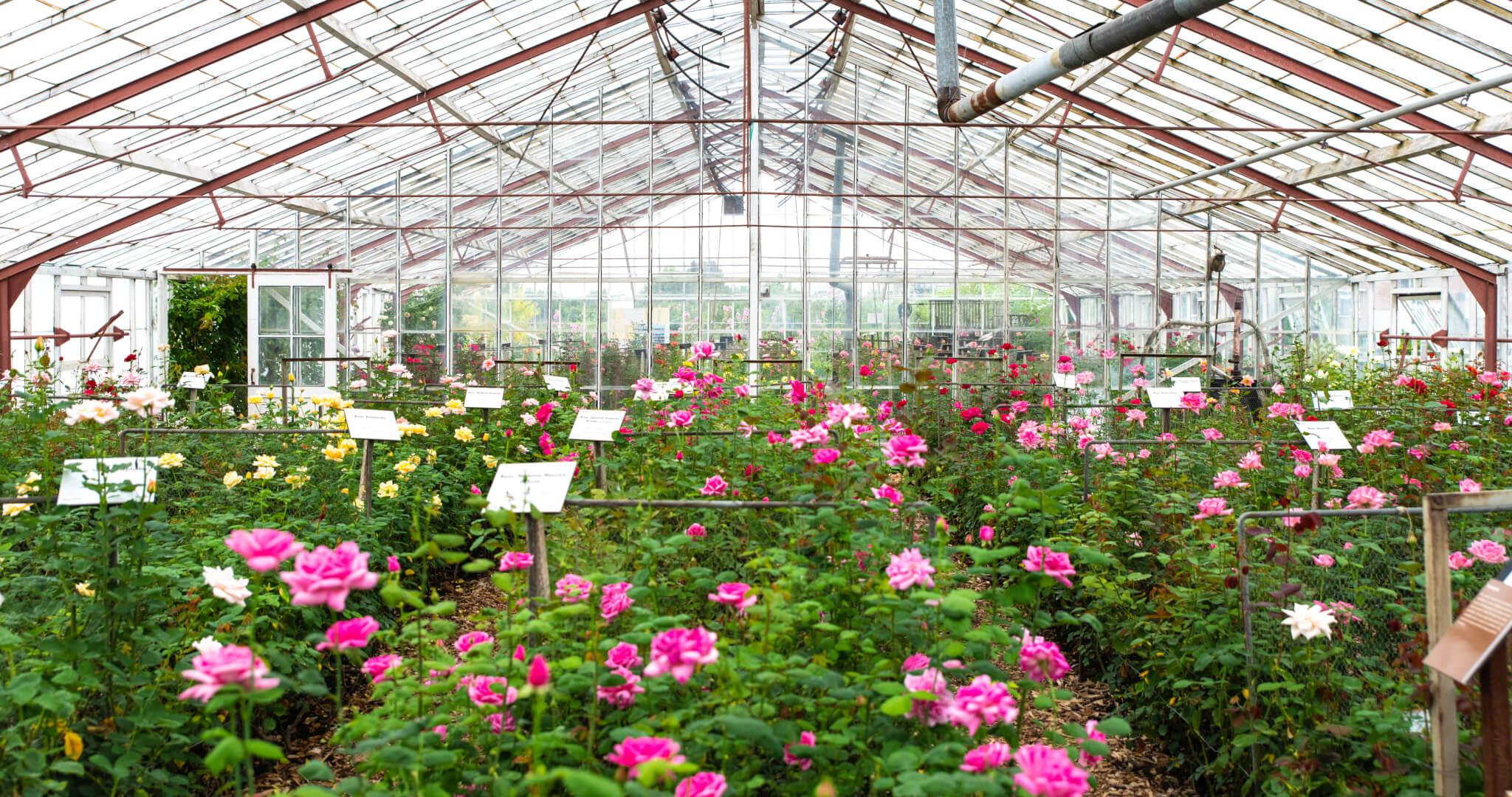 Historical Garden Aalsmeer