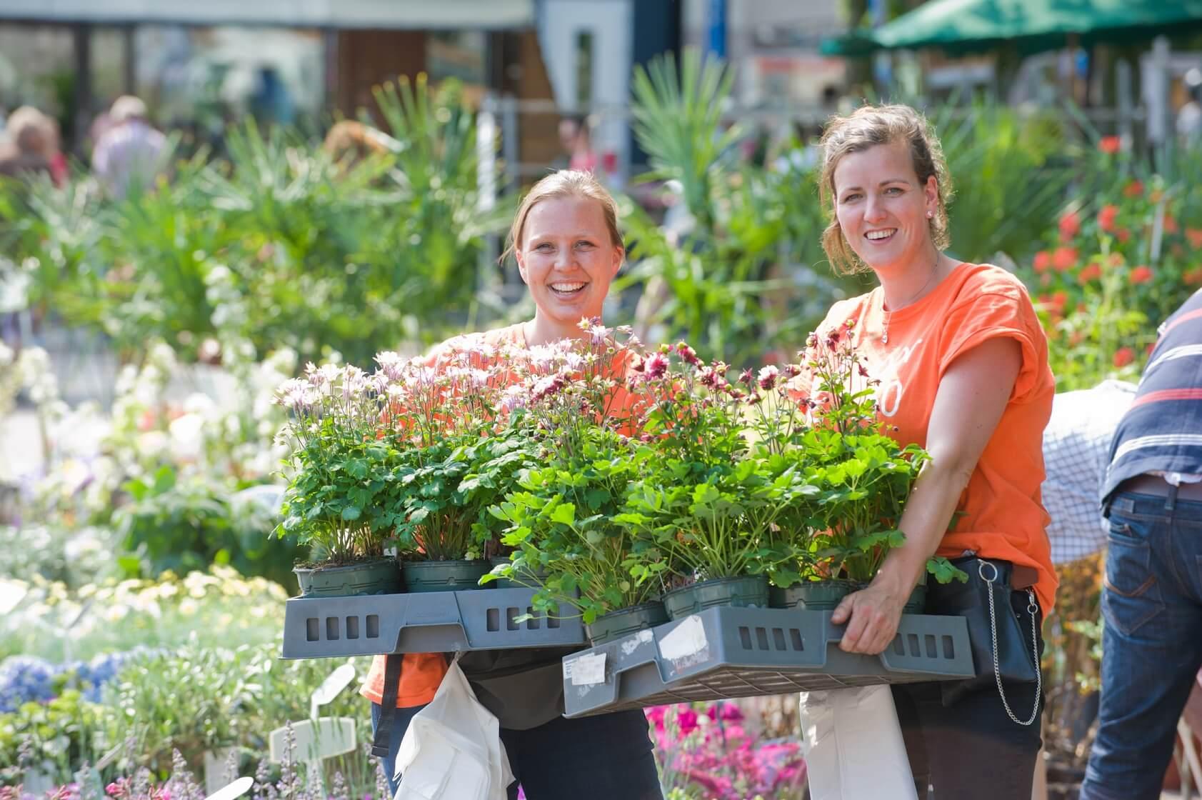 Geraniummarkt en braderie Aalsmeer