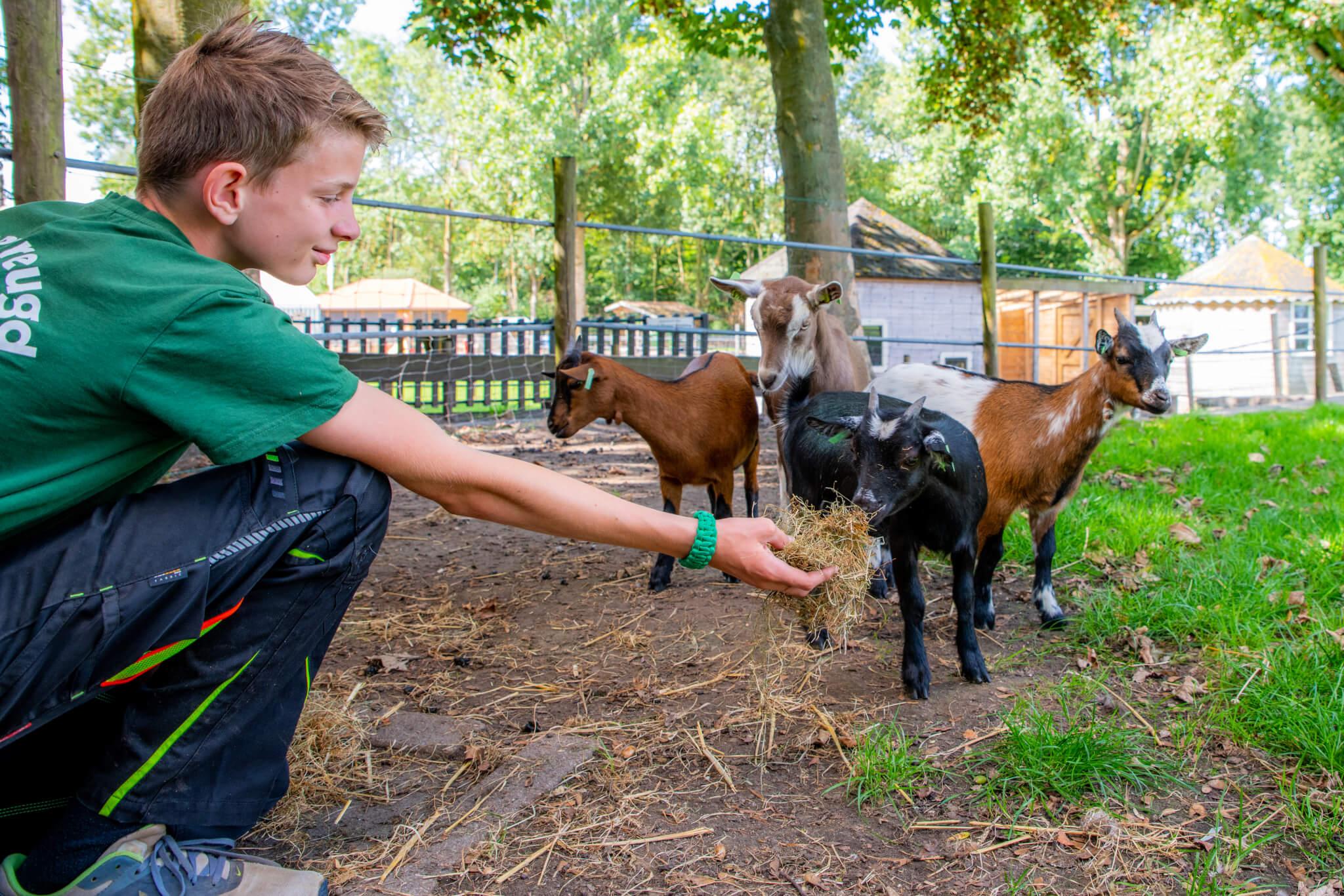Children's Farm Aalsmeer