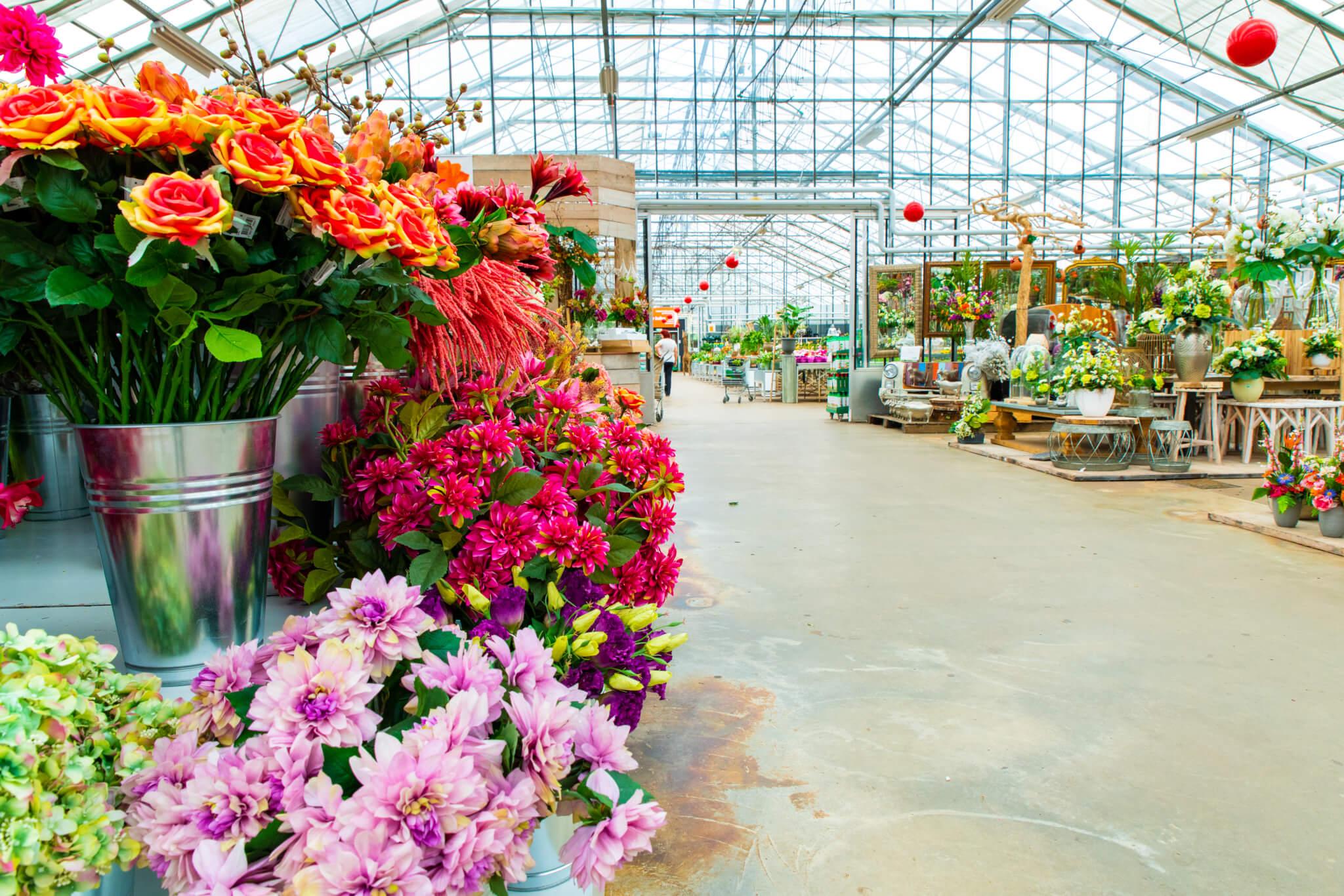 Flowers in Aalsmeer en Shops Aalsmeer - Garden Centre het Oosten