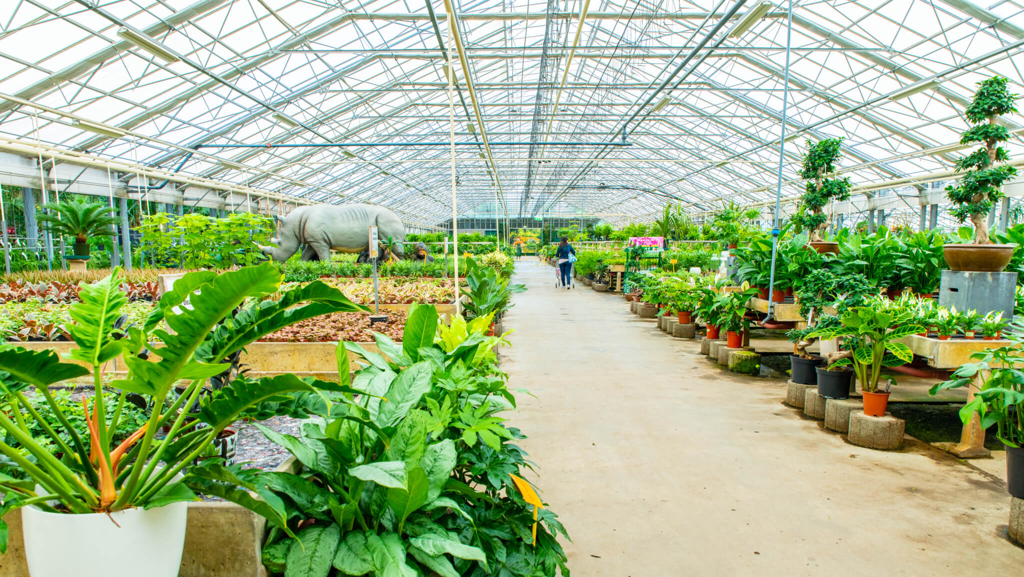 Tuincentrum het Oosten in Aalsmeer