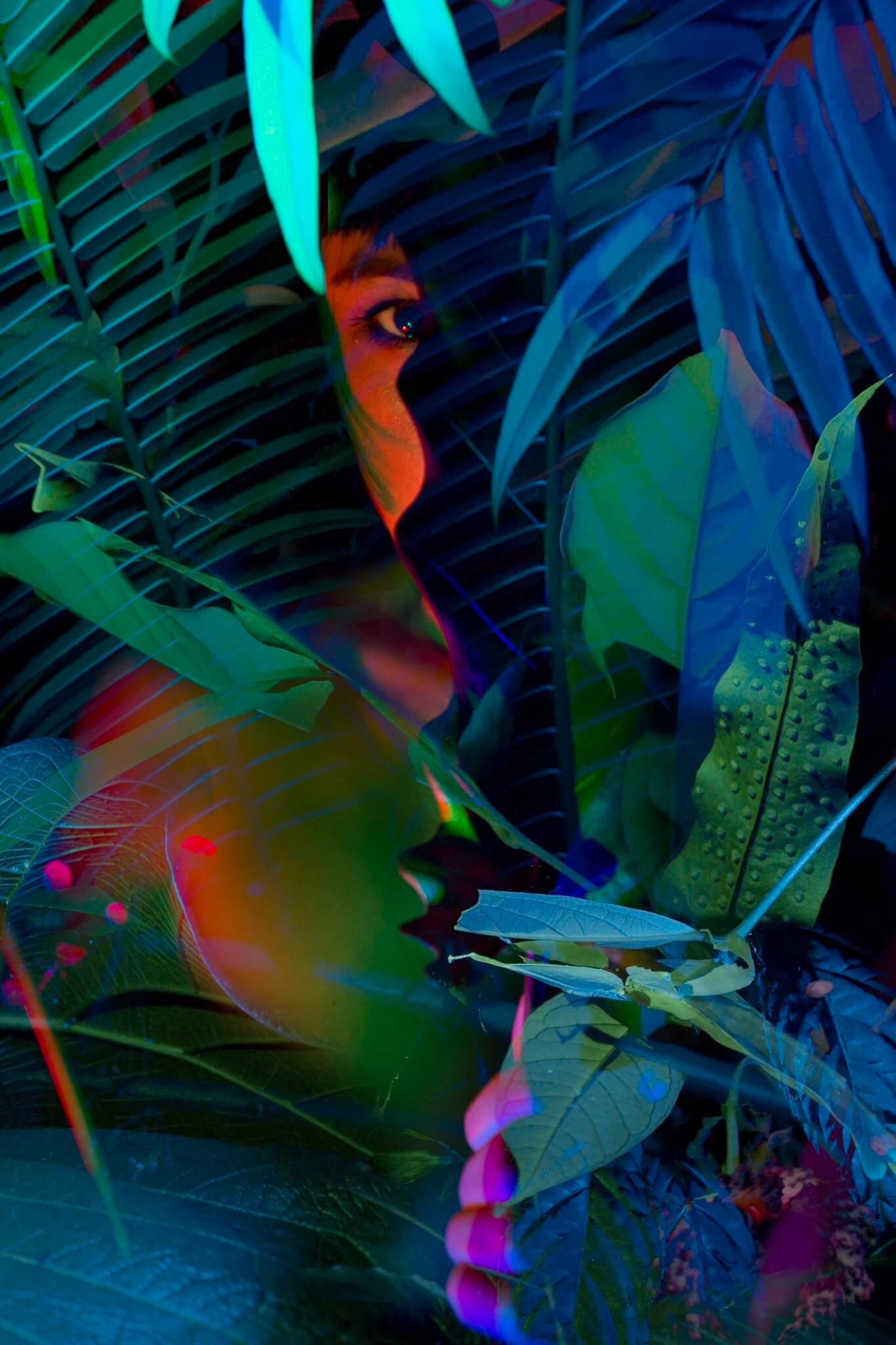 Nocturnal Garden in het Flower Art Museum