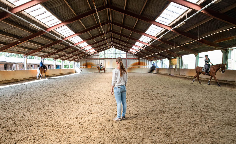 Paardrijden Aalsmeer - Manage en Stal Haastrecht